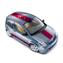 Citroen sport striping 1