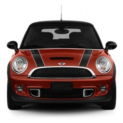 Bonnet stripes 2 (two-tone)