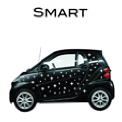 Smart stickers - Stickers per automerk