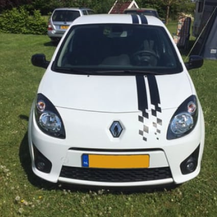 Renault Twingo & Clio striping Renault stickers
